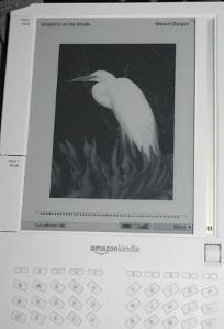 Kindle with egret image